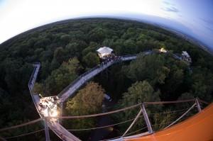 Blick auf den beleuchteten Baumkronenpfad - Foto: Tourismusverband der Welterberegion Wartburg Hainich e.V./Jens Fischer