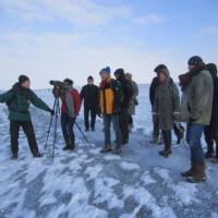 Vogelbeobachtung auf der Halbinsel Nordstrand bei eisigem Ostwind, Foto: Matthias Kundy