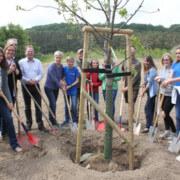 Junior Ranger, Unterstützer und Sponsoren beim Pflanzen eines Kirschbaumes in der neuen Streuobstwiese - Foto: Biosphärenreservatsamt Südost-Rügen