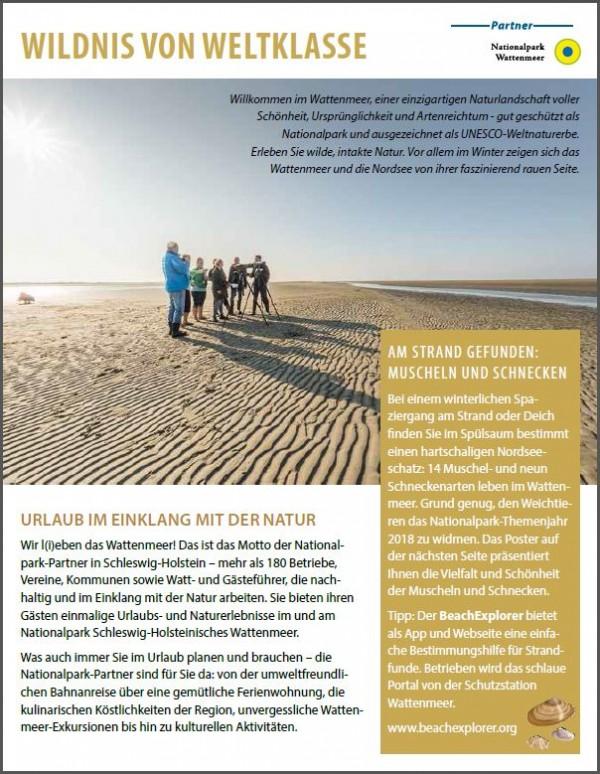 Durch den Winter mit den Nationalpark-Partnern am Schleswig-Holsteinischen Wattenmeer