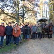 Planwagenfahrt durch den Müritz-Nationalpark - Foto: Nationalparkverwaltung Müritz